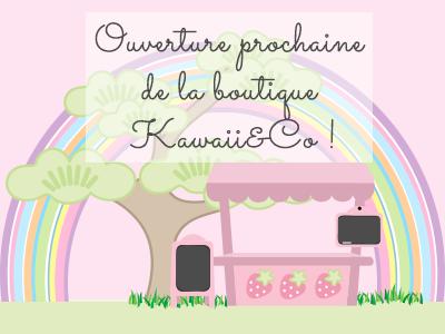 kawaiiandco4